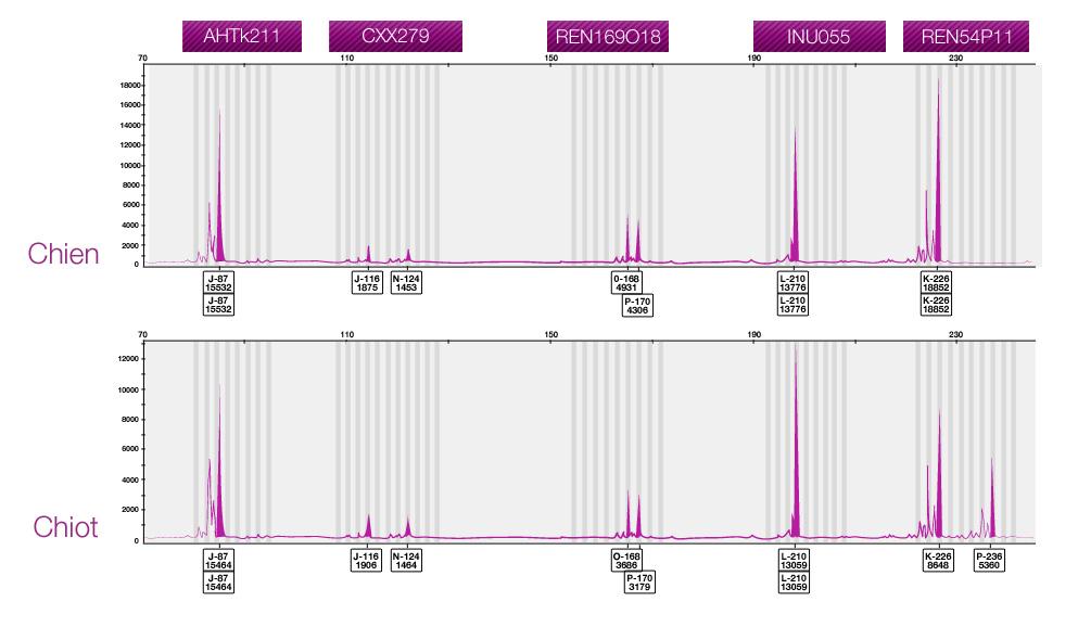 PediGENE - Tableau de comparaison de marqueurs d'ADN