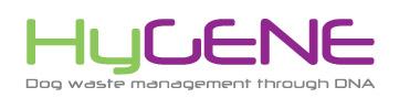 Hygene logo