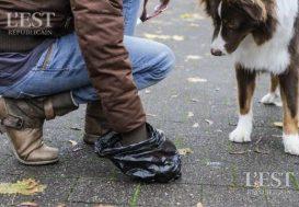 Le coût des déjections canines à Besançon