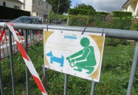 L'ADN pour traquer les propriétaires de chiens indélicats